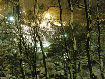 Снежная зимняя ночь